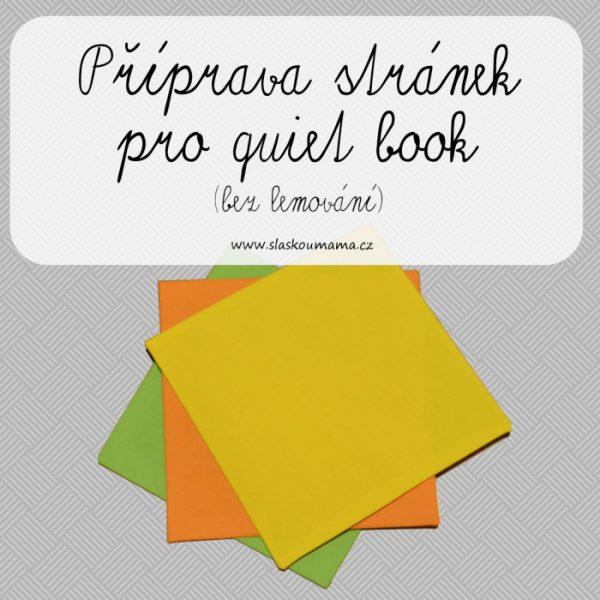 PripravaStranekQB-BezLem_uvod700